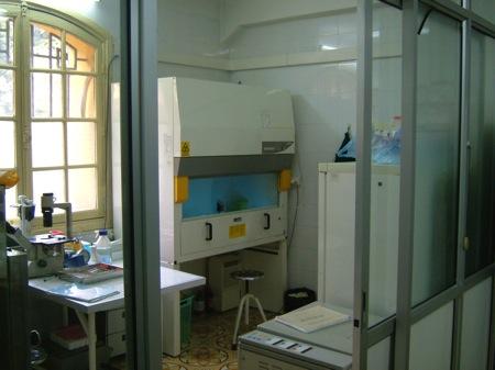 ベトナムの研究所の様子