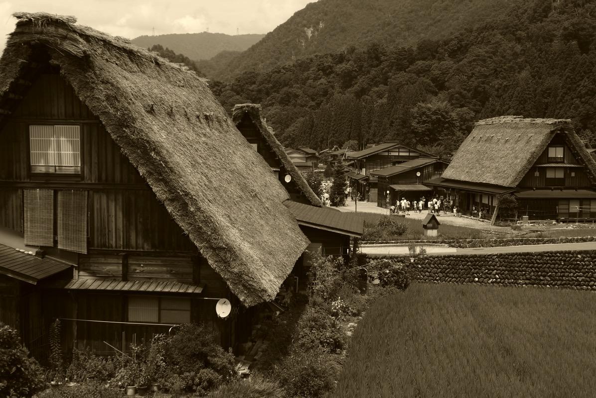 明善寺庫裡からの風景