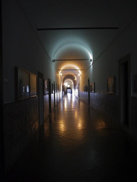 エヴォラ大学