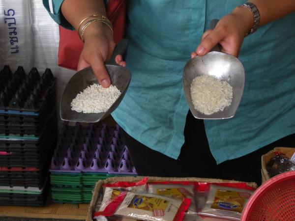 タイ米の種類の違い